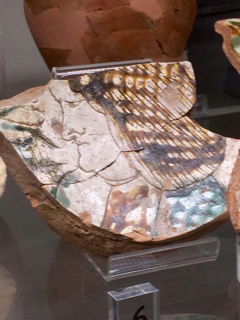 Comacchio - Museo Delta antico 4
