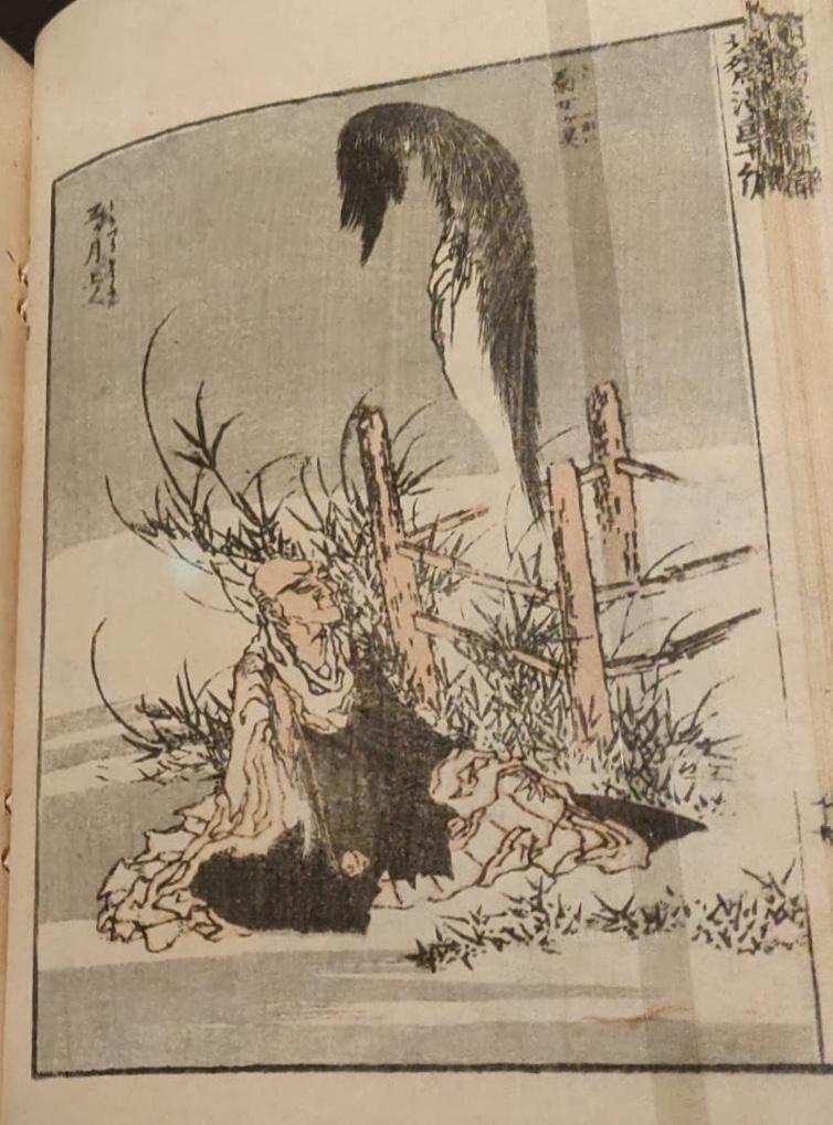 K. Hokusai, Schizzi sparsi.